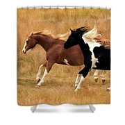 Frolicking Horses Shower Curtain