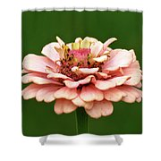 From Garden To Heart Shower Curtain