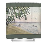 From Park To Pier Shower Curtain