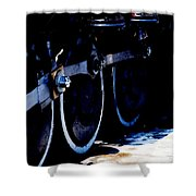 From Ridgway To Durango Shower Curtain