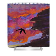 From Shadows Shower Curtain