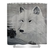 From The Mist Of The Moon Shower Curtain