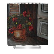 Front Porch Flowers Shower Curtain
