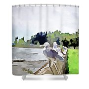 Front Row Seat Shower Curtain