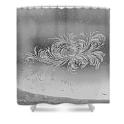 Frost 3 Shower Curtain
