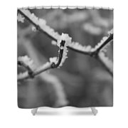 Frost 6 Shower Curtain