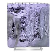 Frost Art Shower Curtain