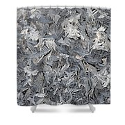 Frost Crystals Shower Curtain