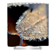 Frost Diamonds Shower Curtain