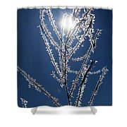 Frost Ice Crystals Shower Curtain