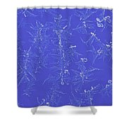 Frost On Car 1 Shower Curtain by Roger Snyder