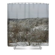 Frost On The Trees Shower Curtain