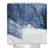 Frost Path Shower Curtain