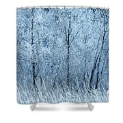 Frosted Beauty Shower Curtain