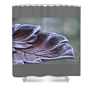 Frosted Bird Bath Shower Curtain