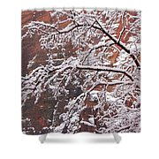Frosted Branches Shower Curtain