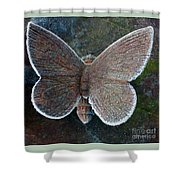 Frosted Butterfly Shower Curtain by Kathy DesJardins
