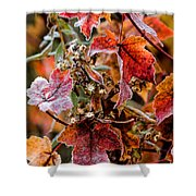 Frosted Fall Shower Curtain