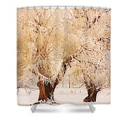 Frosted Golden Trees Shower Curtain