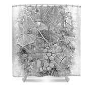 Frosted Grapes Vignette Shower Curtain