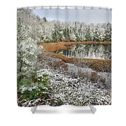 Frosted  Shower Curtain