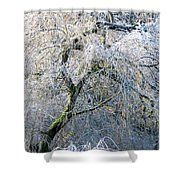 Frosted Limbs Shower Curtain