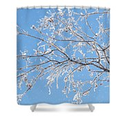 Frosty Branch Shower Curtain