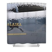 Frosty Canopy Shower Curtain