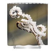 Frosty Curlique With A Twist Shower Curtain