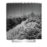 Frosty Field Shower Curtain