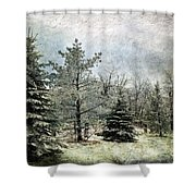 Frosty Shower Curtain by Lois Bryan