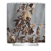 Frosty Morning 2 Shower Curtain