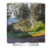 Frosty Morning Near Nant Clwyd, North Wales Shower Curtain