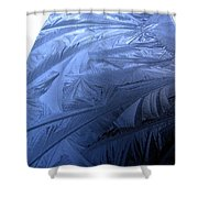 Frosty Palm Tree Fronds On Car Trunk Shower Curtain