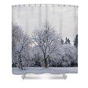 Frosty Park Shower Curtain
