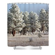 Frosty Pikes National Forest Shower Curtain