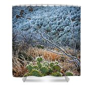 Frosty Prickly Pear Shower Curtain