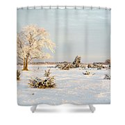 Frosty Solitude Tree In The First Morning Sunshine Shower Curtain