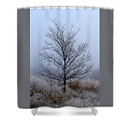 Frosty Tree Shower Curtain
