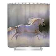 Frosty Turnout Shower Curtain