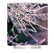 Frosty Twigs Shower Curtain
