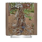 Frozen Banana Tree In Colored Pencil Shower Curtain