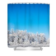 Frozen Beauty  Shower Curtain