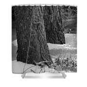 Frozen Black And White Shower Curtain