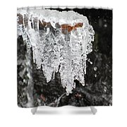 Frozen Branch Shower Curtain