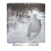 Frozen Brook Shower Curtain