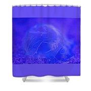 Frozen Bubble  Shower Curtain