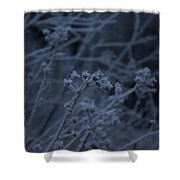 Frozen Buds Shower Curtain