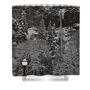 Frozen Dusk Shower Curtain