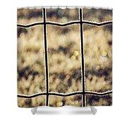 Frozen Fence Shower Curtain by Wim Lanclus